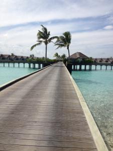 Maldives.. It's a BlueWorld..